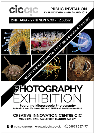 Arts exhibition photography Event Flyer